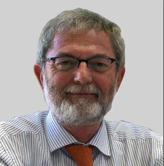 nella foto il prof. Massimo Sorli