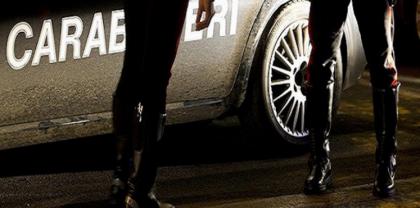 Il resoconto annuale della Direzione centrale antidroga dei Carabinieri