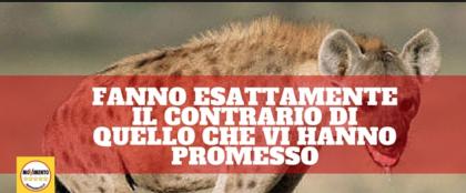 """La Masseria Galeota, e le """"arrampicate"""" sugli specchi del Senatore Turco (M5S)"""